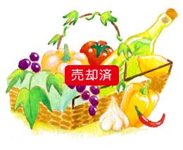 野菜かごのイラスト